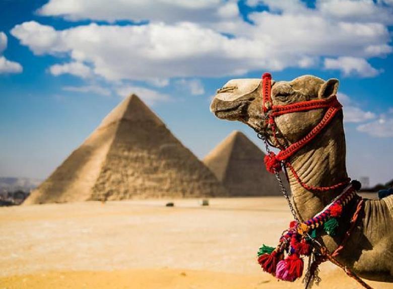 saqqara-day-tour