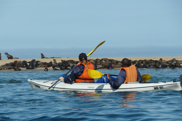 kayaking-sandwich-habour-namibia-day-tours