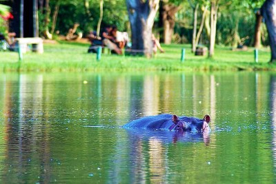 tsavo-safari-3-day-tour-kenya-day-tour